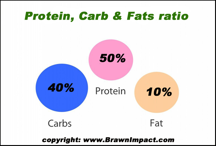 protein carb and fat ratio chart for muscle growth