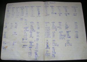 bodybu8ilding bulking diary log