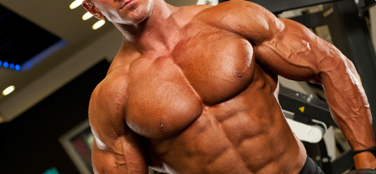 bodybuilding cutting phase